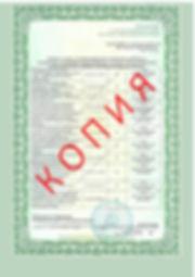 Лицензия 2018 (77).jpg