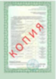 Лицензия 2018 (129).jpg