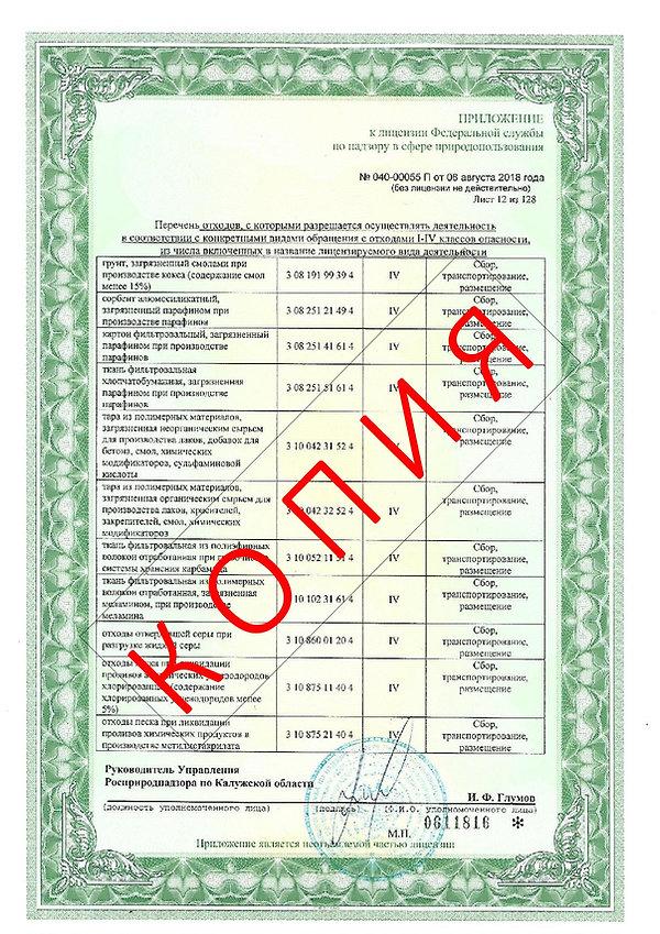 Лицензия 2018 (14).jpg