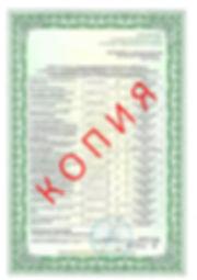 Лицензия 2018 (13).jpg