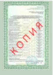 Лицензия 2018 (91).jpg