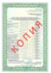 Лицензия 2018 (6).jpg