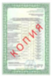 Лицензия 2018 (7).jpg