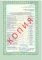 Лицензия 2018 (100).jpg