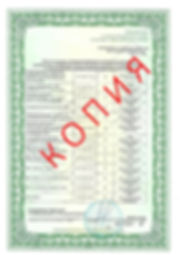 Лицензия 2018 (5).jpg