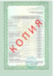 Лицензия 2018 (101).jpg