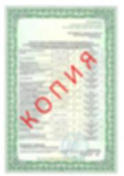 Лицензия 2018 (31).jpg