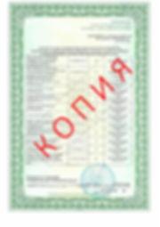 Лицензия 2018 (86).jpg