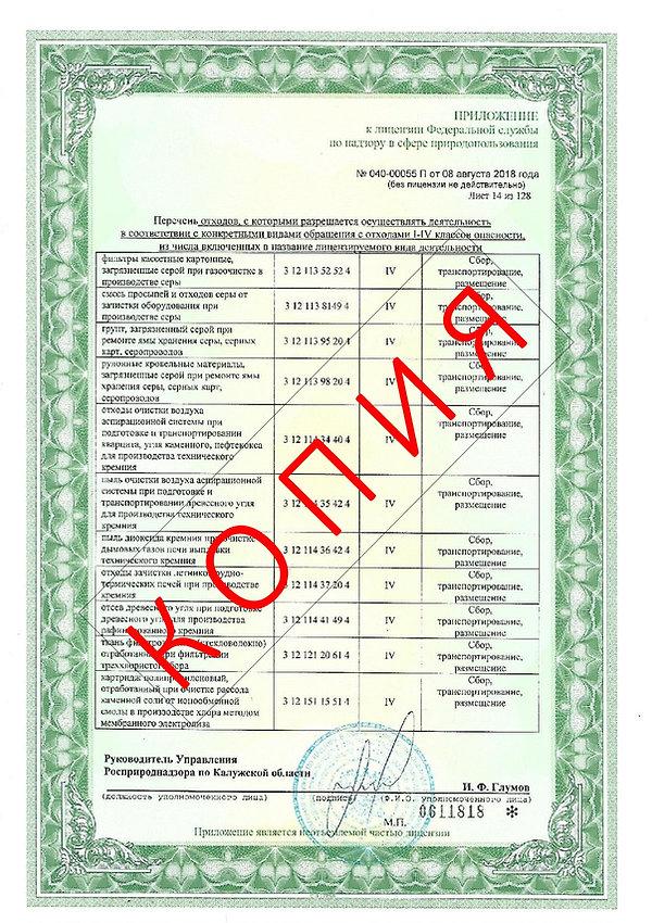 Лицензия 2018 (16).jpg