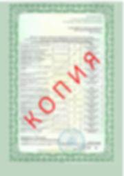 Лицензия 2018 (114).jpg