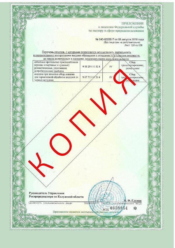 Лицензия 2018 (130).jpg