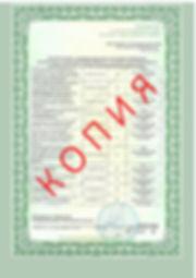 Лицензия 2018 (45).jpg