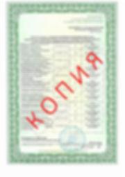 Лицензия 2018 (43).jpg