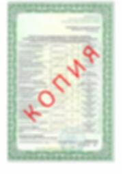 Лицензия 2018 (46).jpg