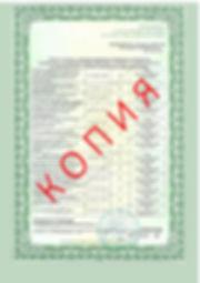 Лицензия 2018 (42).jpg