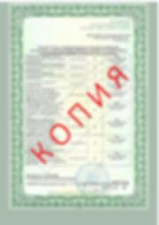 Лицензия 2018 (44).jpg