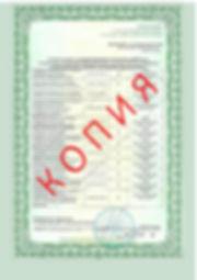 Лицензия 2018 (66).jpg