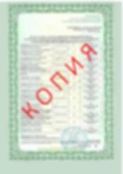 Лицензия 2018 (98).jpg