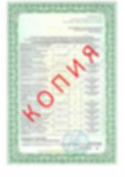 Лицензия 2018 (104).jpg