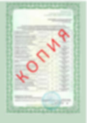 Лицензия 2018 (96).jpg