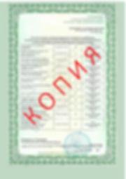 Лицензия 2018 (90).jpg