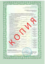 Лицензия 2018 (128).jpg