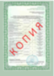 Лицензия 2018 (89).jpg
