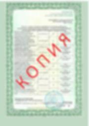 Лицензия 2018 (75).jpg