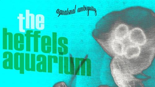 The Heffels Aquarium