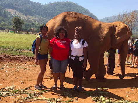 Protect Thy Elephants: Visit to the Sanctuary