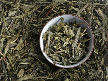 Зелений чай сенча: що це таке, опис напою, його корисні лікувальні властивості