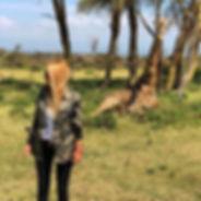 11-Jan15-giraffe.jpg