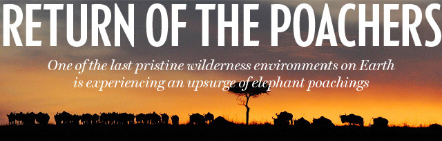 THE NATIONAL POST: RETURN OF THE POACHERS