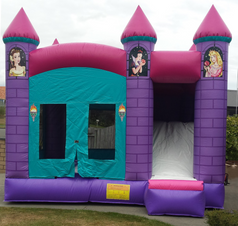 Disney Princess Bouncer