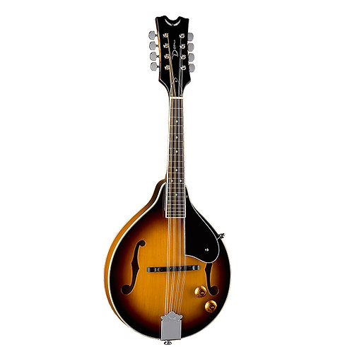 Tennesse Acoustic Electric Mandolin