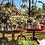 Thumbnail: Mesa Imbuia Classic (Diâmetros: 1,23 / 1,29 / 1,40)