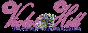 Violet Hill Logo 3_edited.png