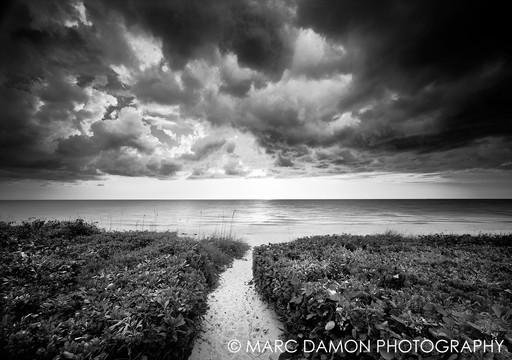 Naples Beach #15 - 2016