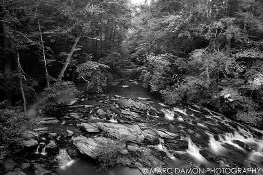 Tumbling Water Creek - 2020