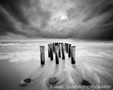 Naples Beach #6 - 2012 (Storm Isaac)