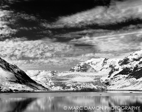 Glacier Bay #4 - 2013