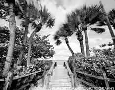 Naples Beach #7 - 2013