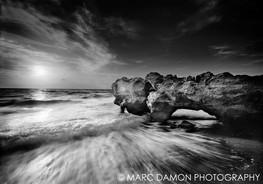 Coral Cove - 2014
