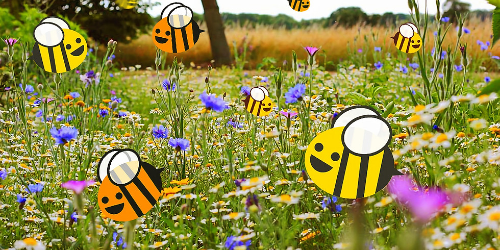 Bees, Blooms & Butterflies - Community Sowing!