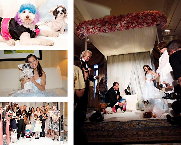 Photo-Collages-for-About-Wendy-9-1536x1229.png