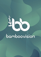 Brochure Bamboovision - Bamboo furnitures and Bamboo Straws