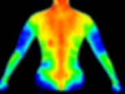 Thermography shutterstock_598972061.jpg