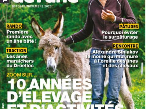 Nos ânesses Dardare et Adélaïde à l'honneur dans les Cahiers de l'Âne d'octobre 2020