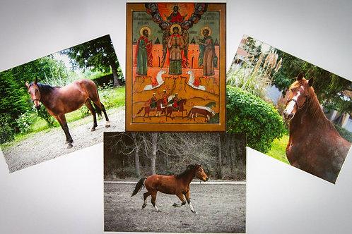 Lot de quatre cartes postales avec nos chevaux et l'icône