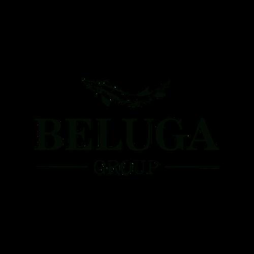 Логотип Белуга Груп.png